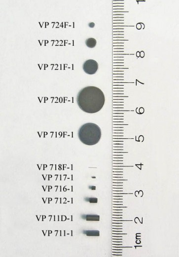 VP 719F-1 - Parylene encapsulated Stainless Steel Stir Discs for 48 Well Microplates,  8.00 mm diameter x 0.685 mm thick