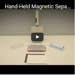 Hand-Held Magnetic Separation Plate Flick and Blot